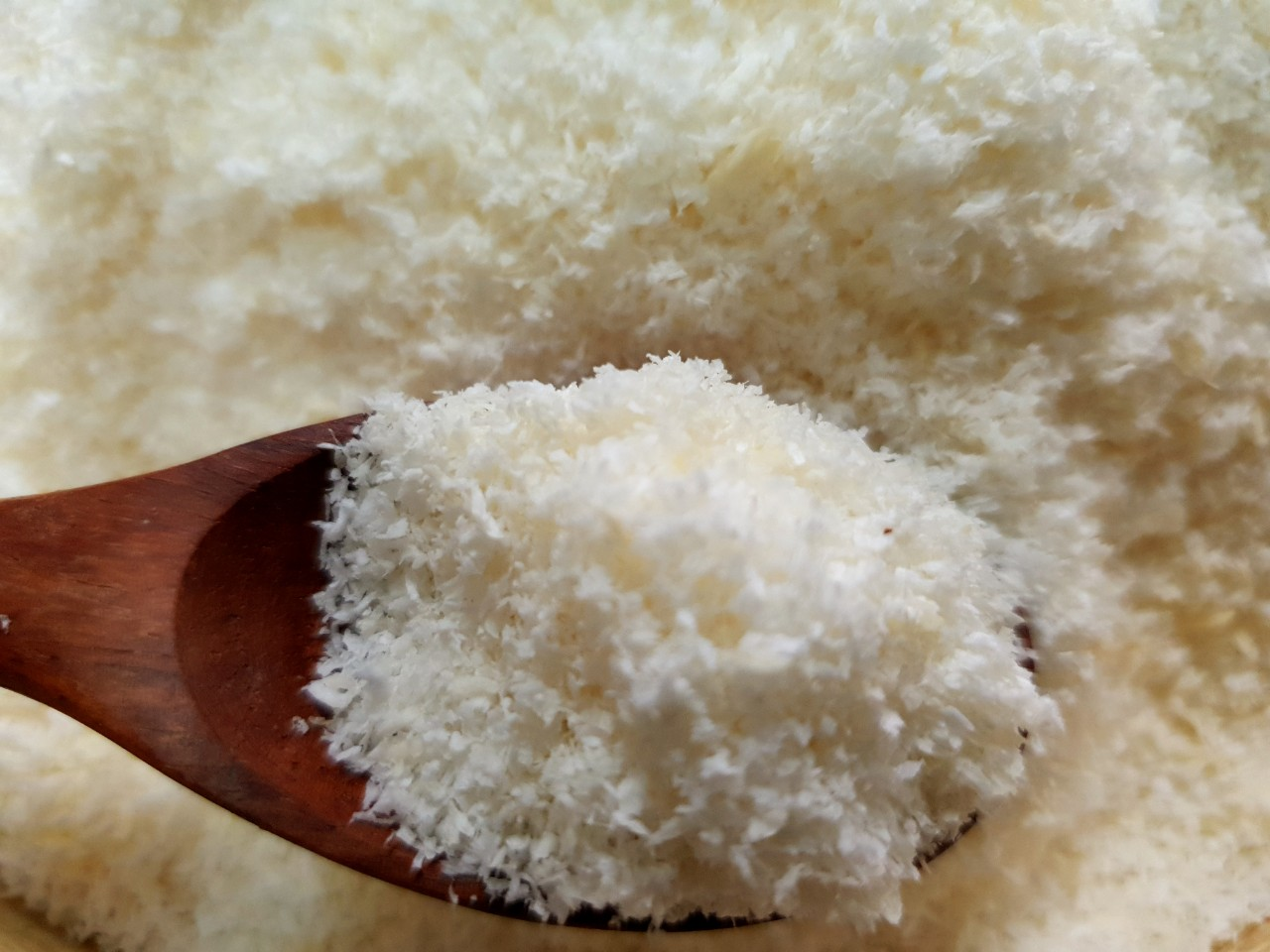 DESICCATED COCONUT LOW FAT