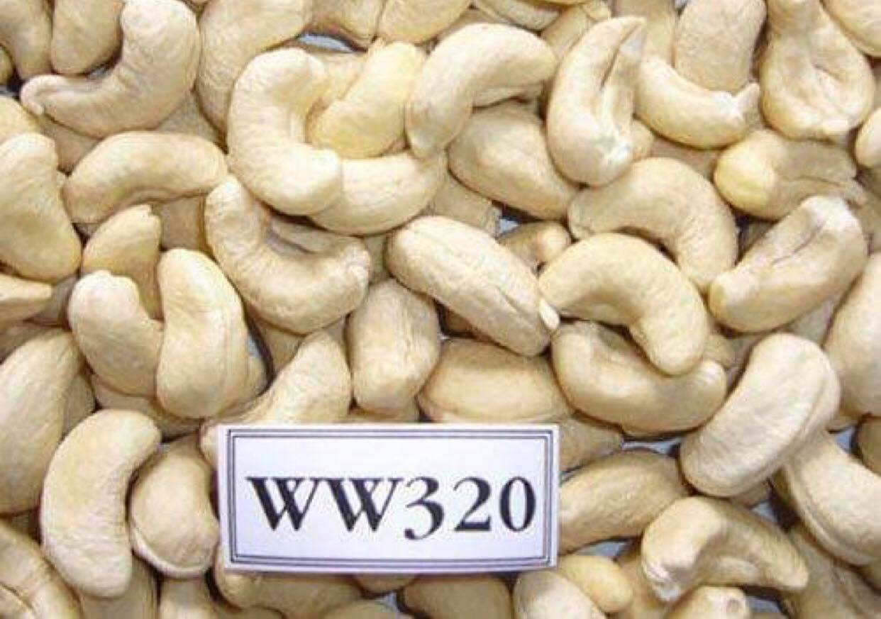 How are cashew nuts classified?