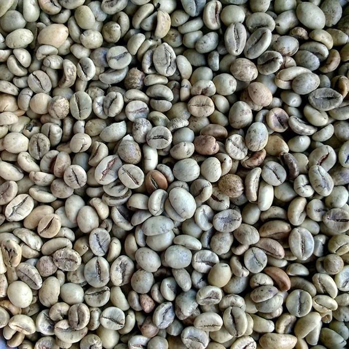 生清咖啡S18