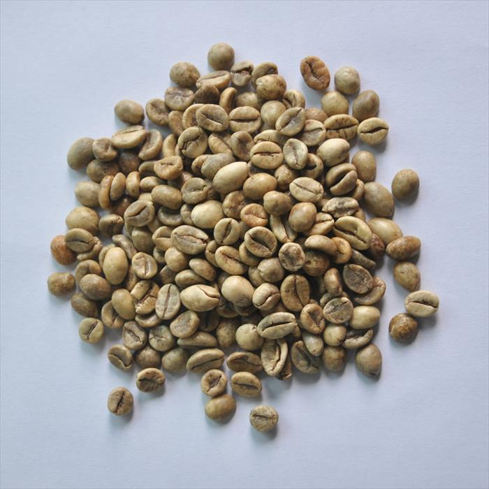生清咖啡S16
